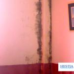 condentation humidité mur