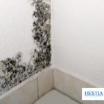 condentation humidité angle mur