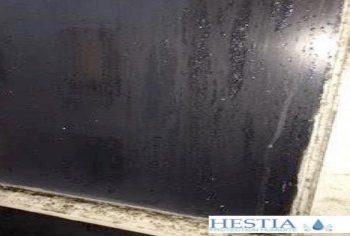 Condensation et moisissure sur fenêtre